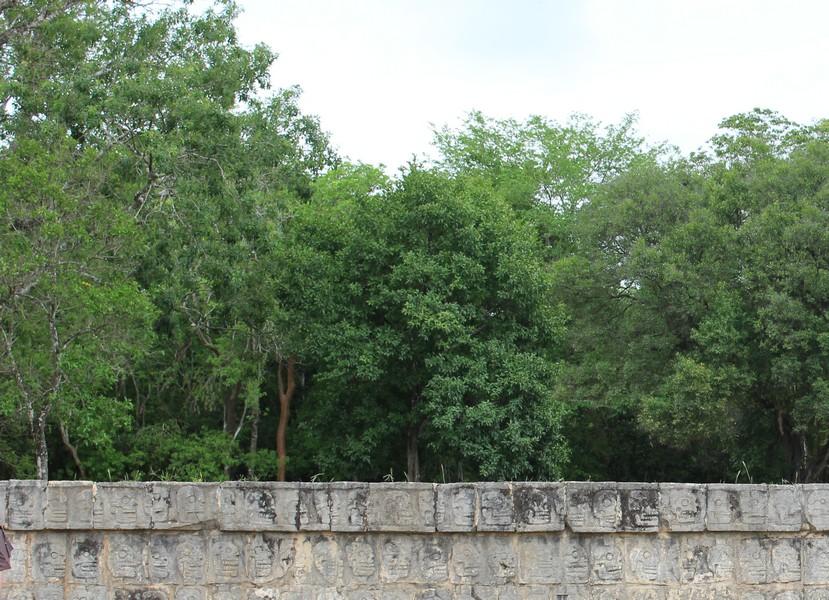 mur sacrifice