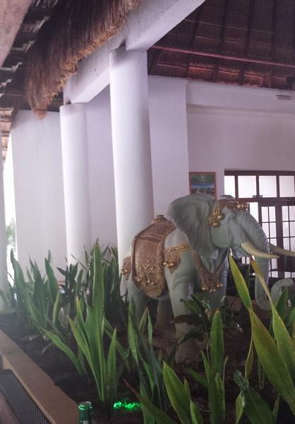 elephant sandos