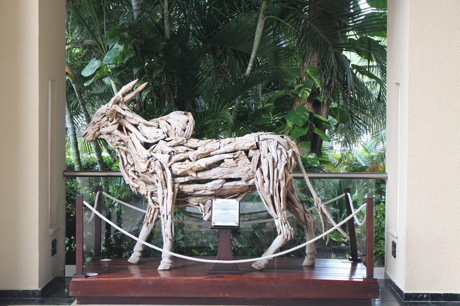 Sandos caracol eco resort h tel au mexique constance rose - Quel bois pour sculpter ...