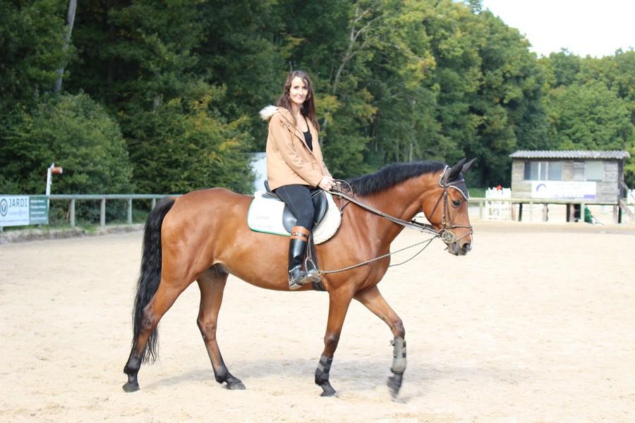 bootes de cheval