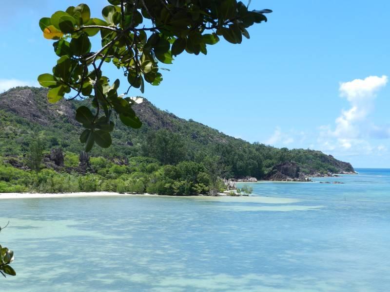 curious island beach