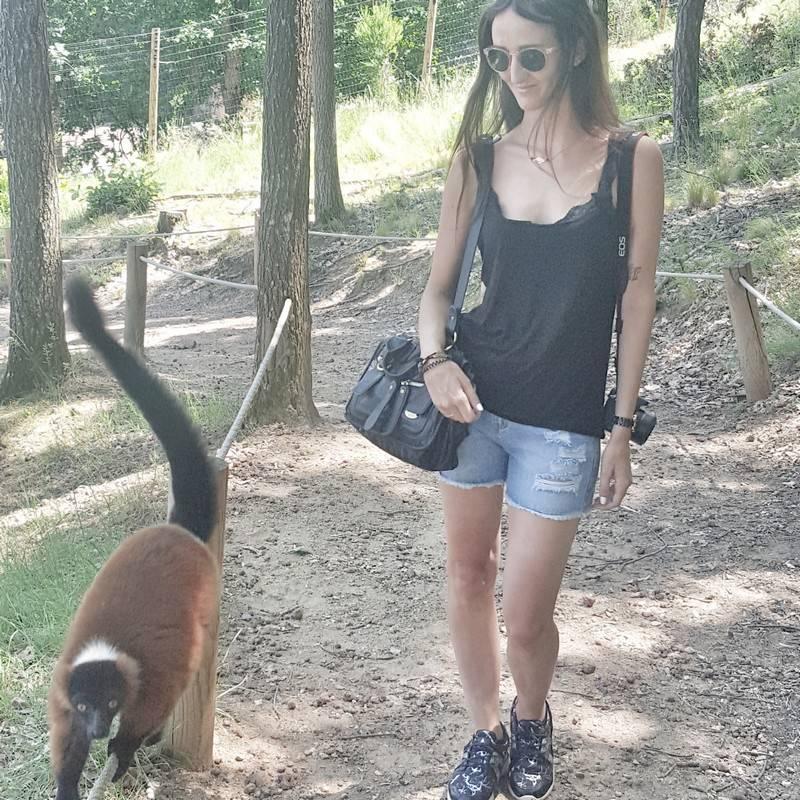 parc animalier dauvergne